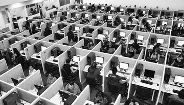 People working in cubicles - Business Culture and processes